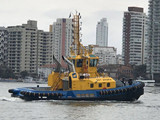 Wilson Sons Delivers Tug to SAAM SMIT in Brazil