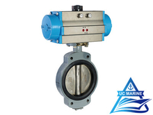 Marine Center-pivoted Pneumatic-drive Butterfly Valve