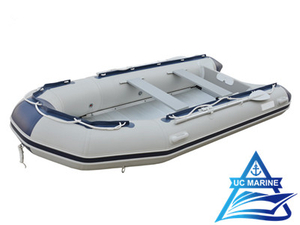 ZYE Type PVC Inflatable Sport Boat