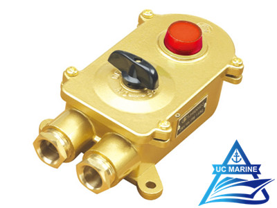 Marine Brass Switch with Indicator Light TJHSD202