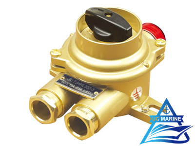 Marine Brass Switch with Indicator Light TJHHL302