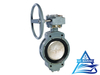 Marine Duo-eccentric-pivoted Worm-drive Manual Butterfly Valve