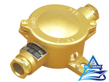 Marine Brass Junction Box TJJXH201