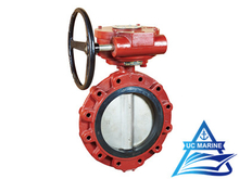 Marine Center-pivoted Flanged Worm-drive Manual Butterfly Valve